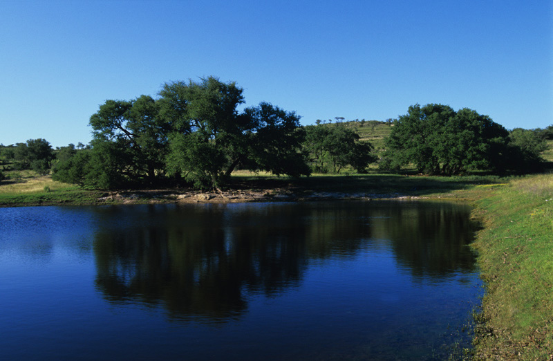 Ranches And Rivers Real Estate Ranches And Land For Sale